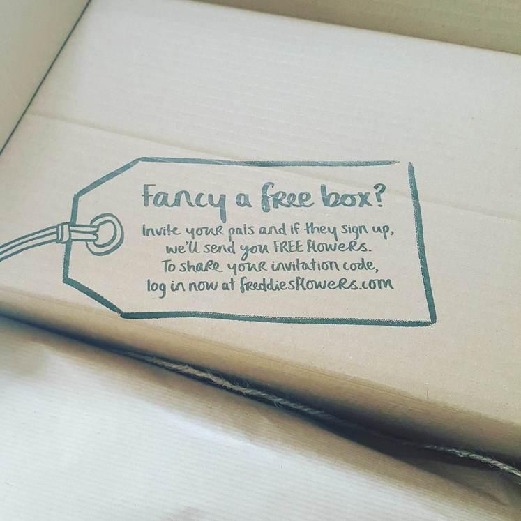 Freddies Flowers Subscription Box Free Box