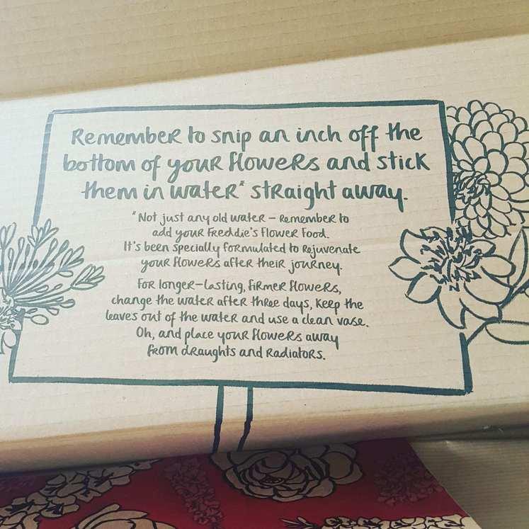 Freddies Flowers Subscription Box 2