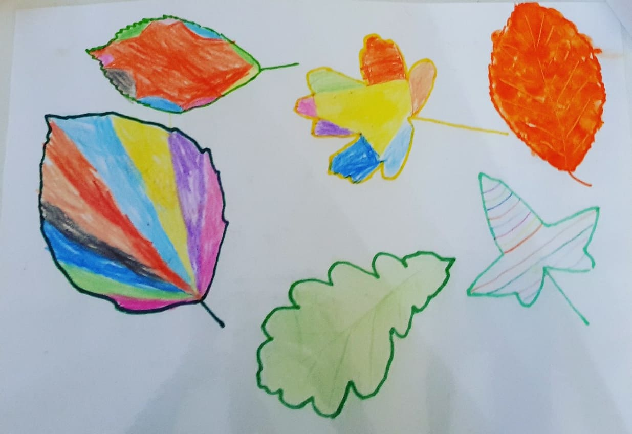 leaf drawing and colouring in